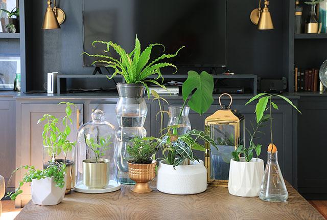 20 Creative Plant Pot Ideas Home Made By Carmona